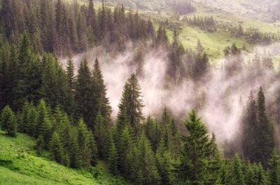 Fototapeta Górski krajobraz z mgły