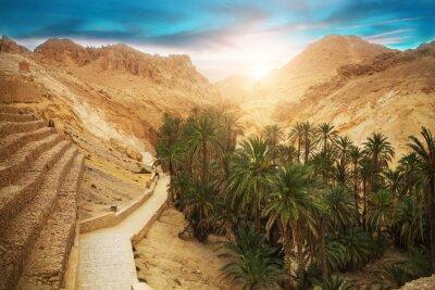 Fototapeta Górskie oazy Chebika, Sahara, Tunezja, Afryka
