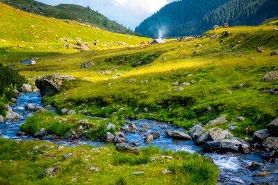 Fototapeta Górskie rzeki