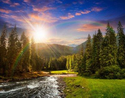 Fototapeta Górskie rzeki w lesie sosnowym o zachodzie słońca