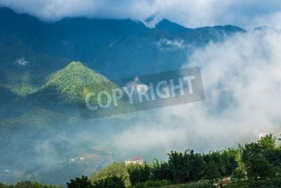 Fototapeta Góry malowniczy las z mgłą.