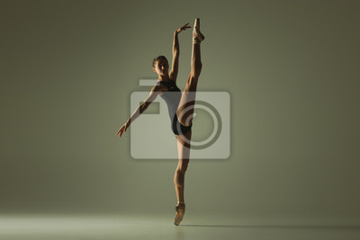Fototapeta Graceful ballet dancer or classic ballerina dancing isolated on grey studio background. Showing flexibility and grace. The dance, artist, contemporary, movement, action and motion concept.