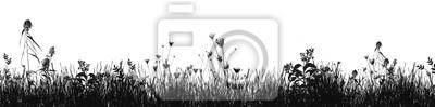 Fototapeta Grass natural silhouette as background