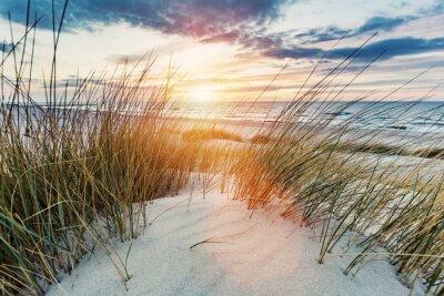 Fototapeta Grassy dunes and the Baltic sea at sunset