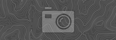 Fototapeta Gray topographic line contour map background, geographic grid map