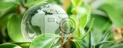 Fototapeta green earth concept glass sphere