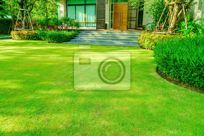Fototapeta Green grass, Modern house with beautiful landscaped front yard, Lawn and garden blur background., The design concept for background, garden with green lawn and garden
