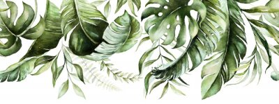Fototapeta Green tropical leaves on white background. Watercolor hand painted seamless border. Floral tropic illustration. Jungle foliage pattern.