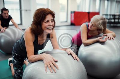 Fototapeta Group of cheerful female seniors in gym doing exercise on fit balls.