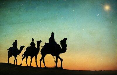 Fototapeta Group of People Riding Camel Isolated on Background