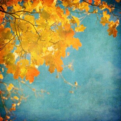 Fototapeta grunge z jesiennych liści