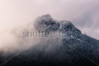 Fototapeta Grzechotnik w chmurach.