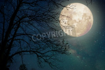 Fototapeta Gwiazda Drogi Mlecznej w nocnym niebie, księżyc w pełni i stare drzewo - grafika w stylu retro z zabytkowym odcieniem koloru (Elementy tego obrazu księżyca dostarczone przez NASA)