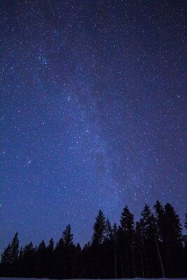 Fototapeta Gwiazdy3