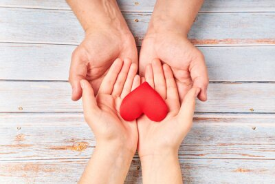 Fototapeta Hands holding a red heart, health care, donate. world health day