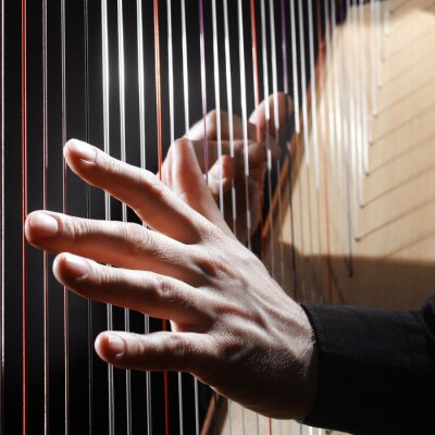 Fototapeta Harp strings closeup hands