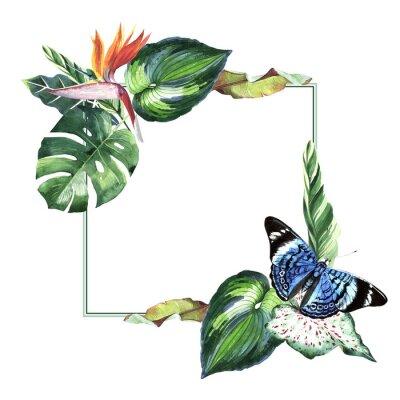 Hawaii Tropical liści drzewa palmowego i motyle ramka w stylu akwarela izolowane.