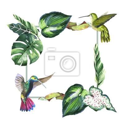 Hawaii Tropical liści palmy ramkę w stylu akwarela izolowane.