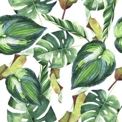 Hawaii Tropical liści palmy wzór w stylu akwarela izolowane.