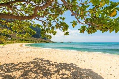 Fototapeta Hawajska plaża z piaskiem i górskich tle