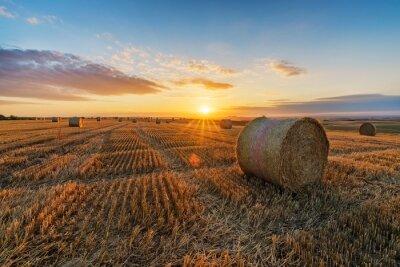 Fototapeta Hay Bales On Field Against Sky During Sunset