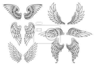 Fototapeta Heraldyczne skrzydła ustawione