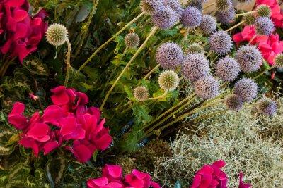 Fototapeta Herbztzeit Flowerbed