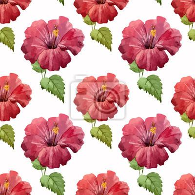 Fototapeta hibiscus1