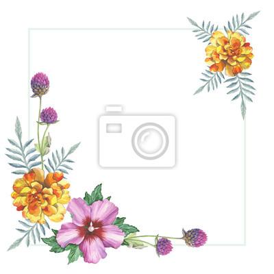 Hibiskus, nagietek żółta róża i gomphrena kwiat ramki wieniec ornament w akwareli rysunku. Kwiatowy element projektu druku, romantyczny zaproszenia, dekoracje, podobieństw lub wzoru.