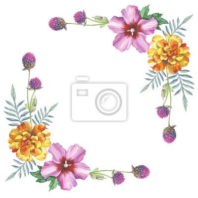 Hibiskus róża i gomphrena kwiat ramki wieniec ornament w akwareli rysunku. Kwiatowy element projektu tła, plakat, drukuj, romantyczny zaproszenia, dekoracje, podobieństw lub wzoru.