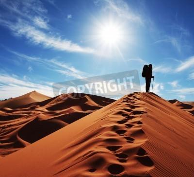 Fototapeta Hike in sand desert