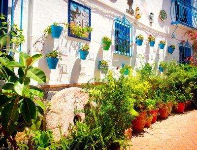 Fototapeta Hiszpania. Torremolinos. Costa del Sol, białe wioski Andaluzji