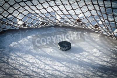 Fototapeta Hokej netto z krążkiem w celu