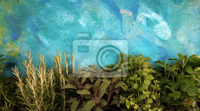 Fototapeta Homegrown and aromatic herbs on rustic background with rosemary and basil