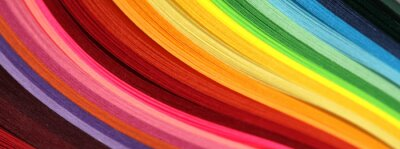 Fototapeta Horizontal Abstract vibrant color wave rainbow strip paper background.