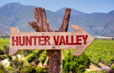 Fototapeta Hunter Valley drewniany znak z winnicy tle