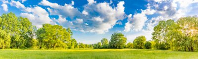 Fototapeta Idyllic mountain landscape with fresh green meadows and blooming wildflowers. Idyllic nature countryside view, rural outdoor natural view. idyllic banner nature, panoramic spring summer scenery