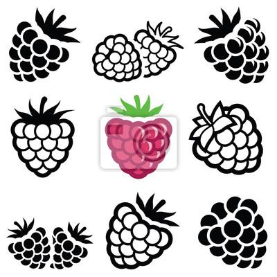 Fototapeta Ikona Raspberry - ilustracji wektorowych