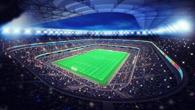 Fototapeta illuminated football stadium with fans in the stands