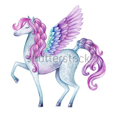 Fototapeta ilustracja akwarela pegasus, stwór z bajki, latający ogier, magiczne zwierząt clipart, na białym tle
