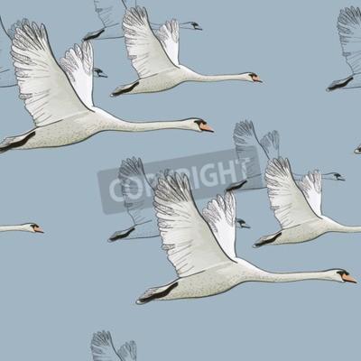 Fototapeta ilustracja Jednolite wzór rysunku Flying Swans. Ręcznie rysowane, doodle projekt graficzny z ptakami. Papier pakowy, tapeta, tło.