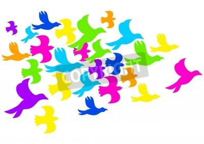Fototapeta Ilustracja kolorowe ptaki