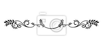 Fototapeta ilustracja ozdobny granica (roślina naturalna)