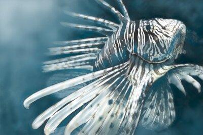 Fototapeta Ilustracja z cyfrowym skorpeny tabletu niebezpiecznej,