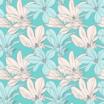 Fototapeta Ilustracja z magnolii