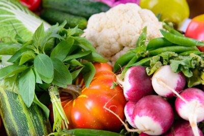 Fototapeta Inne warzywa dojrzałych