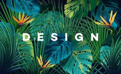 Fototapeta Jasne tło tropikalne z roślinami dżungli. Egzotyczny wzór z liśćmi palmowymi.