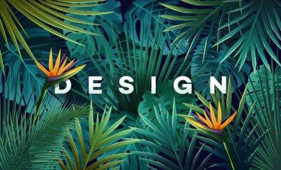 Fototapeta Jasne tropikalne tło z dżungli roślin. Egzotyczny wzór z liści palmowych.