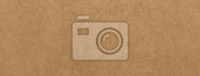 Fototapeta Jasnobrązowy papier pakowy tekstury transparent tło