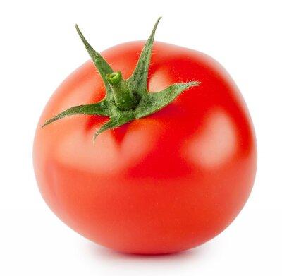 Fototapeta Jasny czerwony pomidor z uchwytem